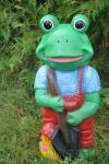 Frosch als Gärtner