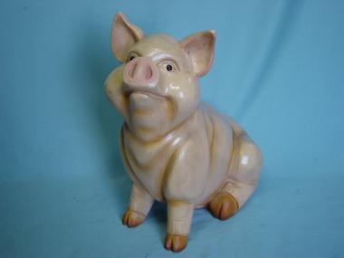 Schwein, sitzend