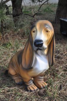Hund Basset, Morgan Hund