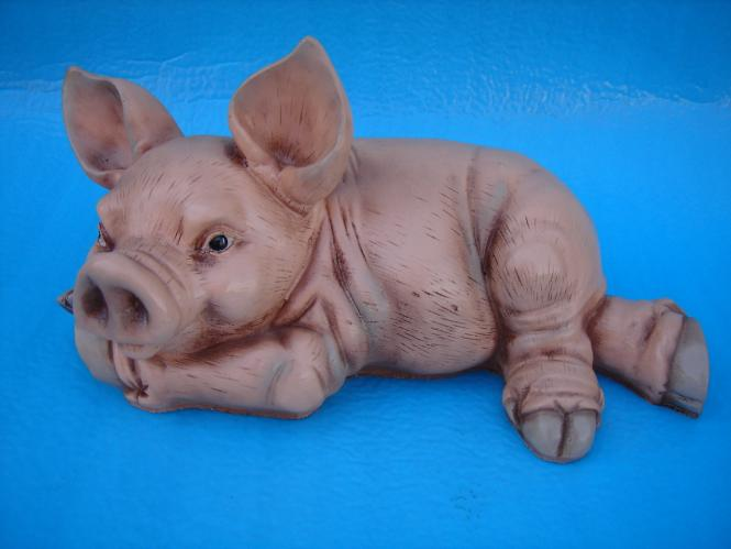 Schwein, liegend